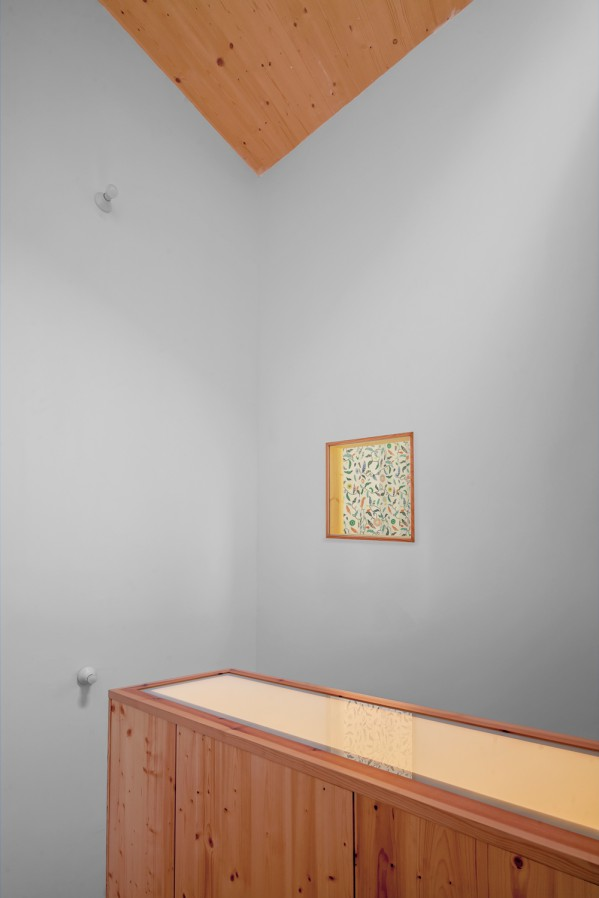 Reforma habitatge entremitgeres Sant Daniel - 3